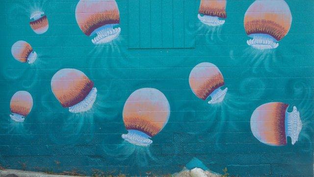 jellyballs