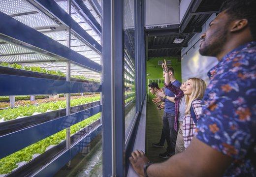 vertical farming viewers.jpg