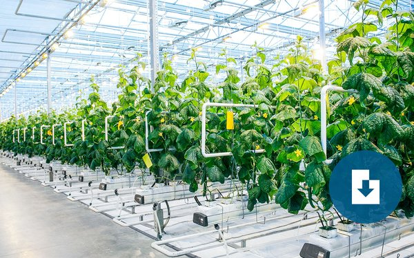 indoor-agriculture-publication-thumb